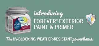 Weather and UV-resistant Paint and Primer in One